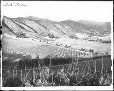 Eagle Rock Valley, ca.1908, looking northeast at left to southeast at right. A couple dozen farmhouses dot the surrounding farmland. Groves of trees and cropland blanket the valley floor. Wild grass, bushes and wild flowers grow in the foreground. Low rolling hills surround the basin in the background. Railroad tracks, Colorado Boulevard and York Boulevard are visible. Source: USC Digital Library, California Historical Society Collection
