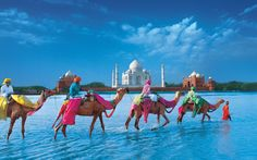 tajmahal new hd wallpaper