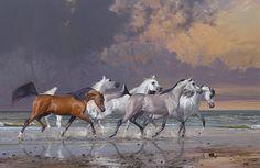 images of arabian horse artwork | Welcome to Arabian Fine Art