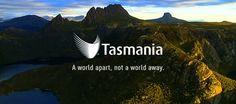 tasmania tourism - Google Search Tasmania, Tourism, World, Google Search, Turismo, The World, Travel, Traveling