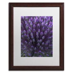 Alien Flower Pods by Kurt Shaffer Matted Framed Photographic Print