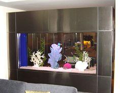 Wonderful Fish Tanks Models Ideas: Built In Fish Tank With Metallic Edging ~ anahitafurniture.com Idea Inspiration