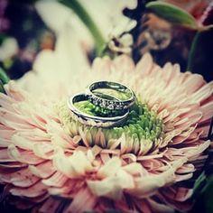 Decoración nocturna para bodas Wedding Sets, Wedding Rings, Boda Ideas, Engagement Rings, Diy, Beautiful, Instagram, Home, Beverage Table