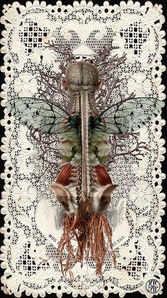 """jac-zap - """"méta.anatomie.1"""" - 2014"""