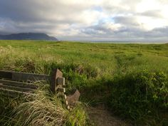 Looking out over the pacific... Perfect quiet time spot! Beach. Gearhart. Oregon Coast