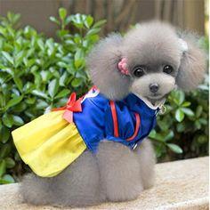 kondrao hund schneewittchen prinzessinnenkleid hund halloween - kostüm - party…