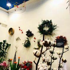 Prácticamente a diario, Elena pasaba por delante del local que hoy ocupa @mariposas2volando … le atraía ese pequeño espacio vacío, le encajaba perfectamente para sus Talleres Creativos. #tallerescreativos #mariposasvolando #sueños #obragrafica #artefloral #ikebana #floristeria #floristeriaalacarta #amialrededor #donostia #gipuzkoa #sansebastian