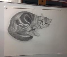 猫の絵描き高橋行雄の制作はじめの作品です。