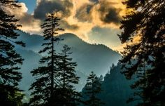 Lower Lodging Cost - http://www.alpinemountainchalets.com/blog/is-a-winter-vacation-in-the-smoky-mountains-right-for-your-family/