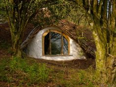 Enchanted Forest Cottage where a writer (me) could write enchanted novels :)