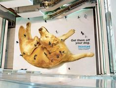 アイデアに嫉妬!海外で実際に存在したクリエイティブな20枚の広告