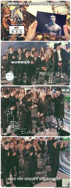 WINNER more excited that Taeyang won than Taeyang Seungri, Bigbang, Yg Artist, Akdong Musician, Winner Ikon, Gd And Top, U Kiss, Meme Center, Brown Eyed Girls