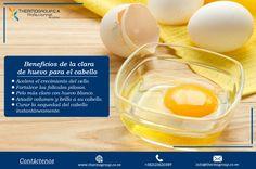 #Beneficios de la clara de huevo para el cabello #Thermogroup