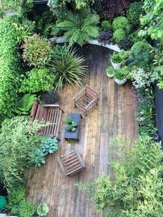 Special Considerations When Designing Your Garden