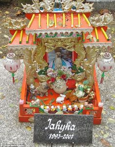 Grave for Jahyka the dog