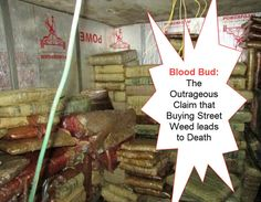 Blood Bud: The Outrageous Claim that Buying Street Weed leads to Death