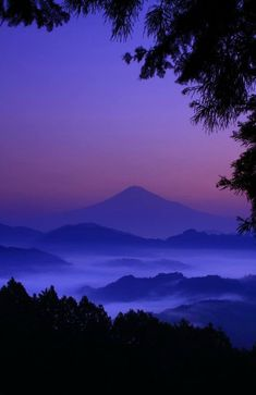 Twilight mountain with foggy foothills and tree silhouettes
