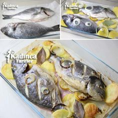 Baked Sea Bream Recipe, How To? - Feminine Recipes - Delicious, Practical and Most Exquisite Recipes Site - Fish Recipes Fish Dinner, Seafood Dinner, Shellfish Recipes, Seafood Recipes, Lemon Recipes, Meat Recipes, Sea Bream Recipes, Seafood Bake, Meat Appetizers