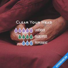 Blend Recipe: 5 drops Lavender, 4 drops Eucalyptus, 3 drops Peppermint