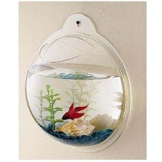 NEW Wall Mount Hanging Beta Fish Bubble Aquarium Bowl Tank Goldfish Home Decor--how cool would several of these be lining the staircase? Bathroom Kids, Kids Bath, Bathroom Wall, Bathrooms, Bathroom Renovations, Mermaid Bathroom, Master Bathroom, Bathroom Storage, Ocean Bathroom Decor