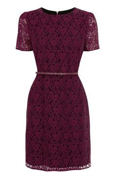 Our beautiful short sleeve lace skater shift dress is perfect for every occasion. Featuring black lining for contrast, a matching belt, and a standout gold zip at the back. Belted Dress, Dress Me Up, Love Fashion, Fashion Outfits, Womens Fashion, Fashion 2020, Fall Fashion, Winter Outfits Women, Summer Outfits