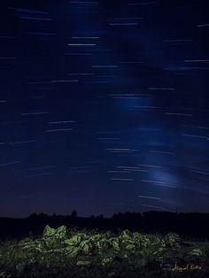 Acercando las estrellas_027