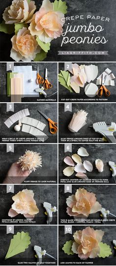 Jumbo Crepe Paper Peonies