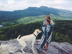 this is all i want. to travel with my pup