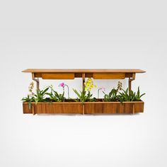 Plant box by Giuseppe Scapinelli