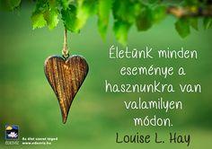 https://www.facebook.com/boszikam/photos/a.119175538199967.20331.109364722514382/953399504777562/?type=3