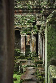 This is not in the India village, looks like Cambodia to me. But you can see all around the world nature reclaims temples and cities that are forgotten, until they're rediscovered again. Les Contes des Fées