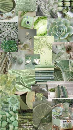 sage green collage