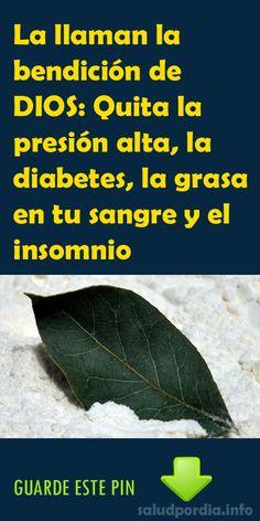 La llaman la bendición de DIOS: Quita la presión alta, la diabetes, la grasa en tu sangre y el insomnio - Salud por Día