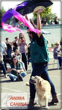 #dogdancing
