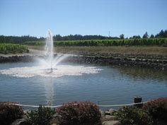 St Innocent, Willamette Valley, Oregon