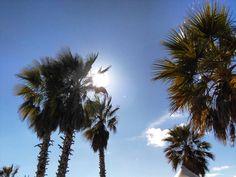 Miami? No Las playas Zaragoza. #costachicalasplayas #zaragoza #igerszgz #mantisgram #regalazaragoza #zgzciudadana #zaragozapaseando #zaragozawalkers #zaragozadestino #blogssipgirl #spring by blogssipgirl