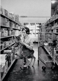 Audrey Hepburn grocery shopping with pet deer (1956)