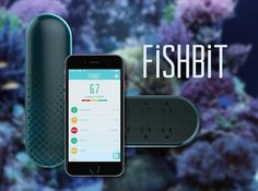 Anyone with an aquarium knows the pains of maintaining that fragile underwater ecosystem — and the result of failure. FishBit, which launched at CES 2015, is...