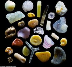 Grains of sand under a microscope.