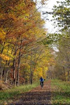 Allegany River Trail- The portion that runs through Cattaraugus County is a 6.2-mile loop trail that runs between the Town of Allegany, NY and the City of Olean, NY along the Allegheny River, plus other properties.