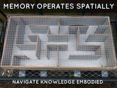 Memory operates spatially: Navigate knowledge embodied Free Presentation Software, Haiku, Ecology, Deck, Knowledge, Memories, Learning, Memoirs, Souvenirs