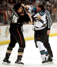 Get him Dougie! Anaheim Ducks, San Jose Sharks, Got Him, Hockey, Happiness, Windows, Sports, Tops, Fashion