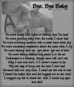 For all of the forgotten abused pets-so sad. If this doesn't make you cry, you're not an animal lover. Then again, maybe you have no heart. All furchildren have a right to live - please give them life - ADOPT. Pet Loss Grief, Pet Remembrance, Stop Animal Cruelty, Rottweiler Puppies, Dog Quotes, Dog Poems, Animal Poems, True Quotes, Rainbow Bridge