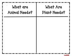 basic needs of animals and plants classroom kindergarten science 1st grade science science. Black Bedroom Furniture Sets. Home Design Ideas