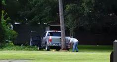 Tentar Derrubar Uma Árvore Com o Veículo Estacionado à Frente Nunca é Boa Ideia