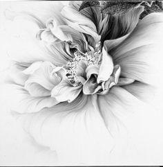 ROSE ALLURE.......HIROMI MIURA.....ARTIST NIHONGA.......PARTAGE OF GLORI.......