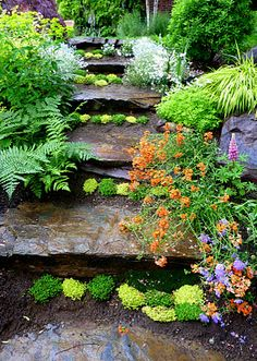 Stone steps lined with greenery and flowers..