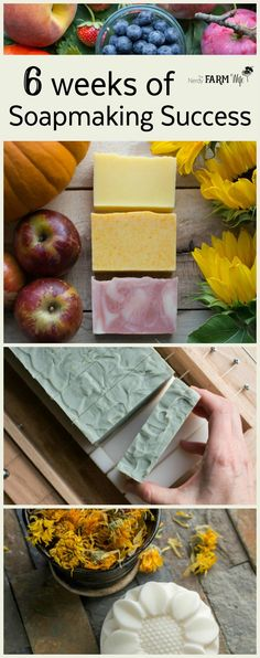 6 Weeks of Soapmaking Success - This e-course dives deeper into six areas of soapmaking that can seem extra challenging or intimidating to soapmakers. Each lesson will equip you with information (including video demos) to help you experience further success in your soapmaking adventures.