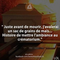 Crunchy news, interesting facts and anecdotes in many places. Funny Memes, Hilarious, Jokes, Rage, Quote Citation, Slogan Tshirt, Image Fun, French Quotes, Funny Photos