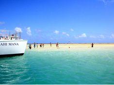 Kaneohe Bay Sandbar Snorkel